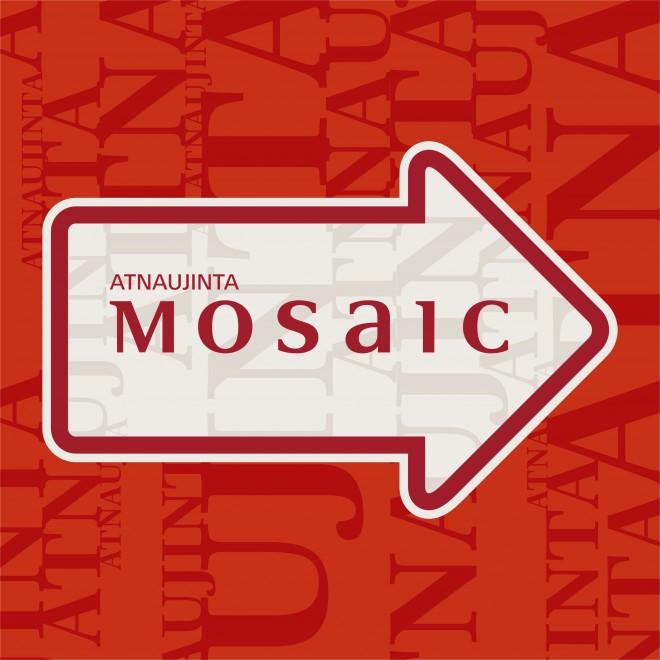 IKDESIGNPOINT-Mosaic-rodykle-grindu-lipdukas